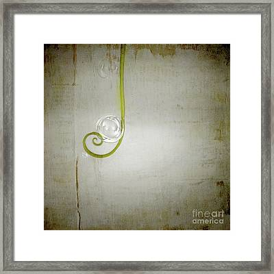 Framed Print featuring the digital art Bubbling - 02tt04a by Variance Collections