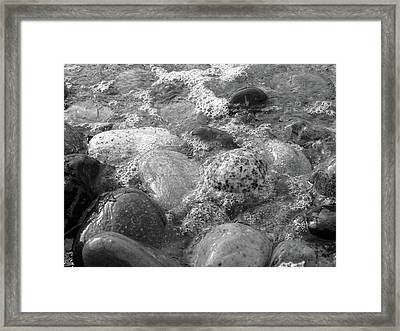 Bubbling Stones Framed Print