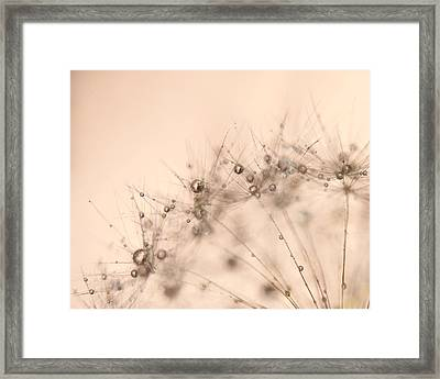 Bubbly Framed Print