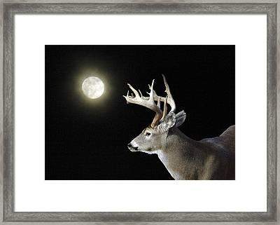Buck Against Halo Moon Framed Print