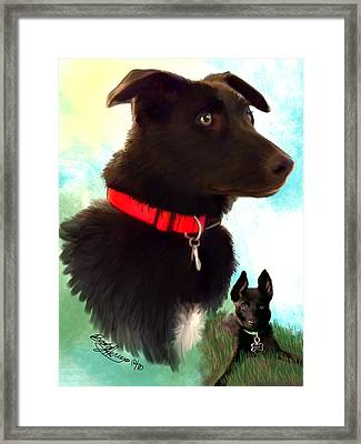 Buck Framed Print by Becky Herrera