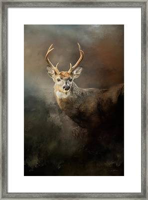 Buck In The Moonlight Framed Print by Jai Johnson