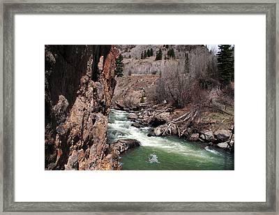 Buck In The Rapids Framed Print
