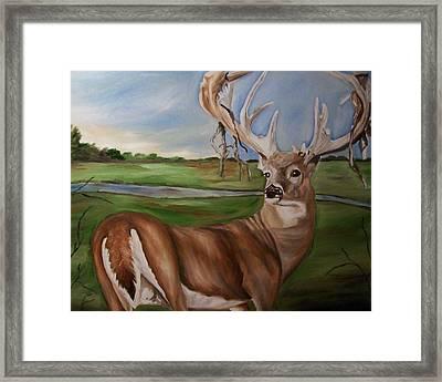 Buck Shedding Velvet Framed Print
