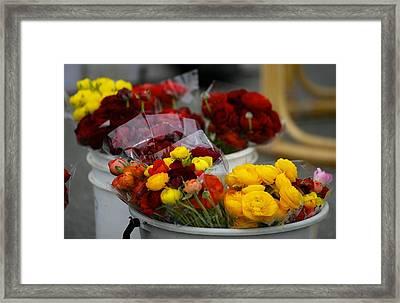 Bucket Of Flowers Framed Print by Joyce Sherwin