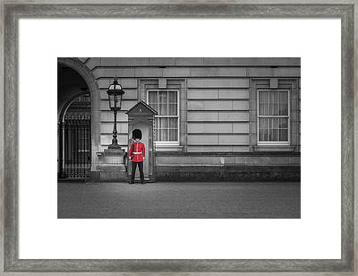 Buckingham Palace Guard Framed Print by Martyn Higgins