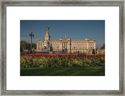 Buckingham Palace Framed Print by Martyn Higgins
