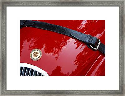 Framed Print featuring the photograph Buckle Up by John Schneider