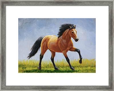 Buckskin Horse - Morning Run Framed Print by Crista Forest