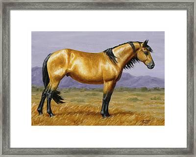 Buckskin Mustang Stallion Framed Print by Crista Forest