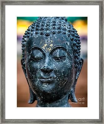 Buddha Framed Print by Adrian Evans