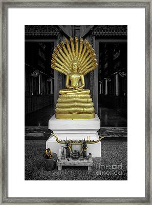 Buddha And Naga Framed Print by Adrian Evans