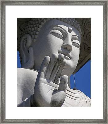 Buddha Framed Print by Mary Lane