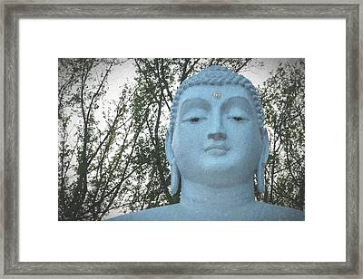 Buddha Nature Framed Print by Terry DeLuco
