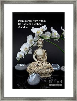 Buddha Quote 2 Framed Print