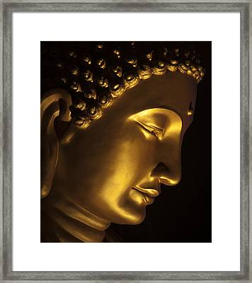 Buddha Taken At Fgs Dong Zen Buddhist Temple Framed Print