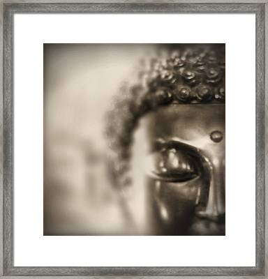 Framed Print featuring the photograph Buddha Thoughts by Douglas MooreZart