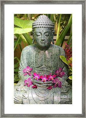 Buddha With Orchids Framed Print by Carol Groenen