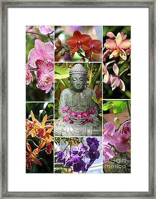 Buddha With Orchids Collage Framed Print by Carol Groenen