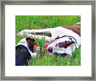 Buddies Framed Print by E Robert Dee