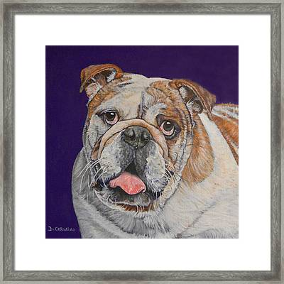 Buddy Framed Print