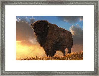 Buffalo At Dawn Framed Print by Daniel Eskridge
