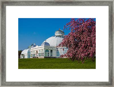 Framed Print featuring the photograph Buffalo Botanical Gardens North Lawns by Don Nieman