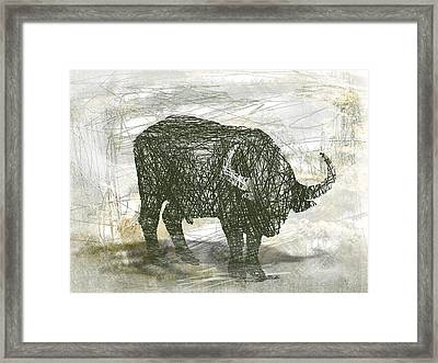 Buffalo Bull Framed Print by Andre Pillay