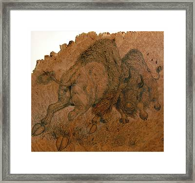 Buffalo Butt Framed Print by Jerrywayne Anderson