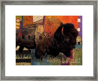 Buffalo Collection Framed Print by Marvin Blaine