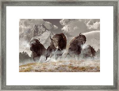Buffalo Framed Print by Daniel Eskridge
