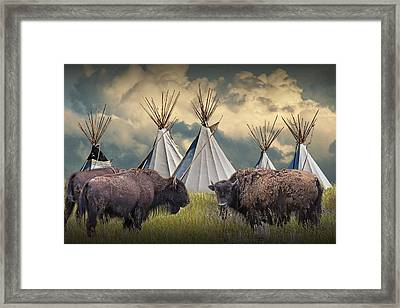 Buffalo Herd On The Reservation Framed Print by Randall Nyhof