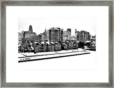 Buffalo In Black And White Framed Print
