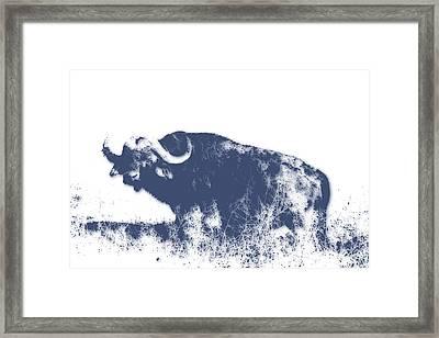 Buffalo Framed Print by Joe Hamilton