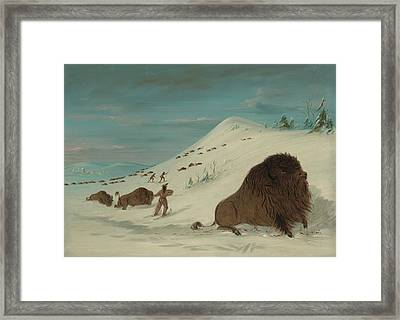 Buffalo Lancing In The Snow Drifts - Sioux American Framed Print