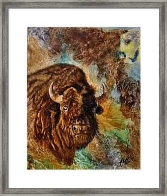 Buffalo Framed Print by Maris Sherwood