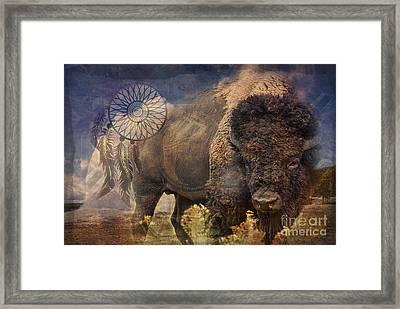 Buffalo Medicine 2015 Framed Print