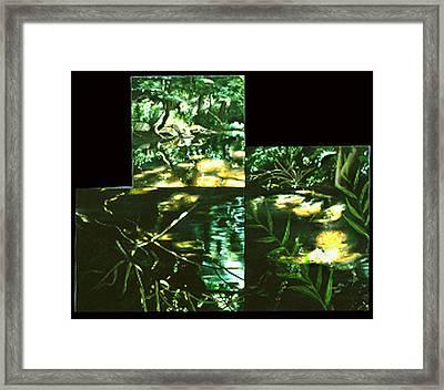 Buffalo River Framed Print by Anne Cameron Cutri