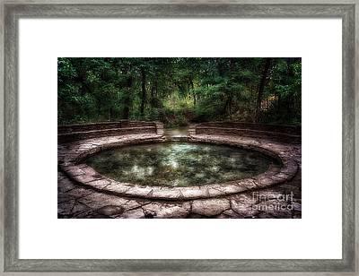 Buffalo Springs Framed Print by Tamyra Ayles