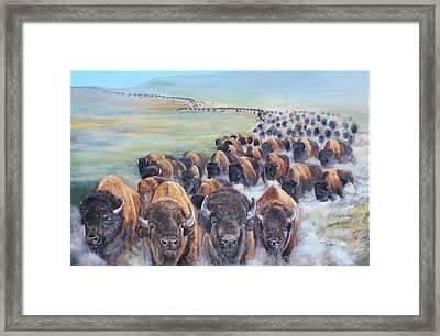 Buffalo Stampede Framed Print
