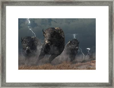 Buffalo Storm Framed Print by Daniel Eskridge