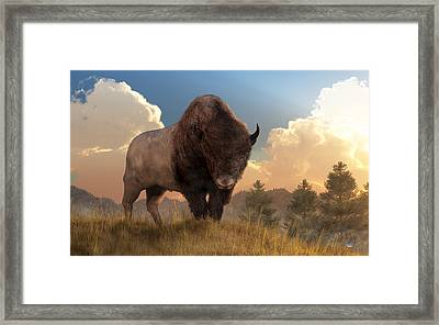 Buffalo Sunset Framed Print by Daniel Eskridge