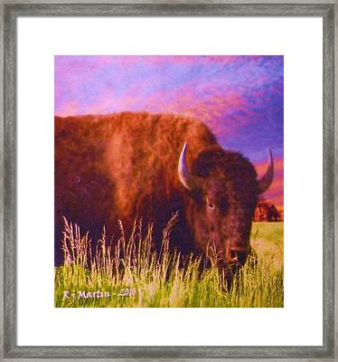 Buffalo Sunset Framed Print