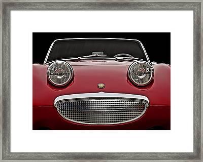 Bug-eyed Sprite Framed Print by Douglas Pittman