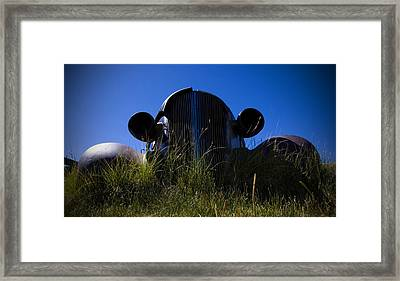 Bug Eyes Framed Print by Chris Brannen