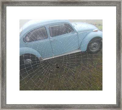 Framed Print featuring the photograph Bug In A Web by Diannah Lynch