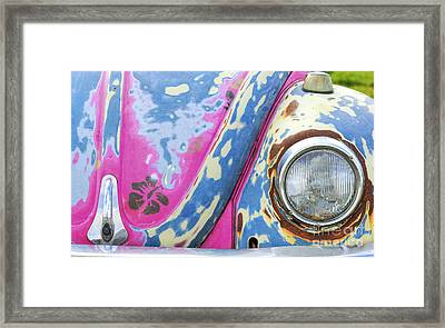 Bug Jammin Framed Print by Tim Gainey