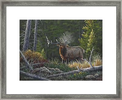 Framed Print featuring the painting Bugling Bull by Kim Lockman