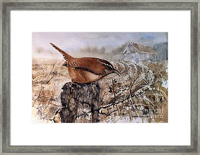 Bugs And Spiders Framed Print by Monte Toon