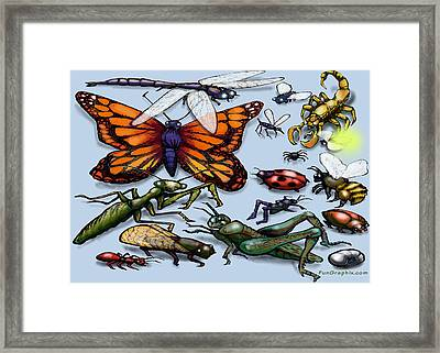 Bugs Framed Print by Kevin Middleton